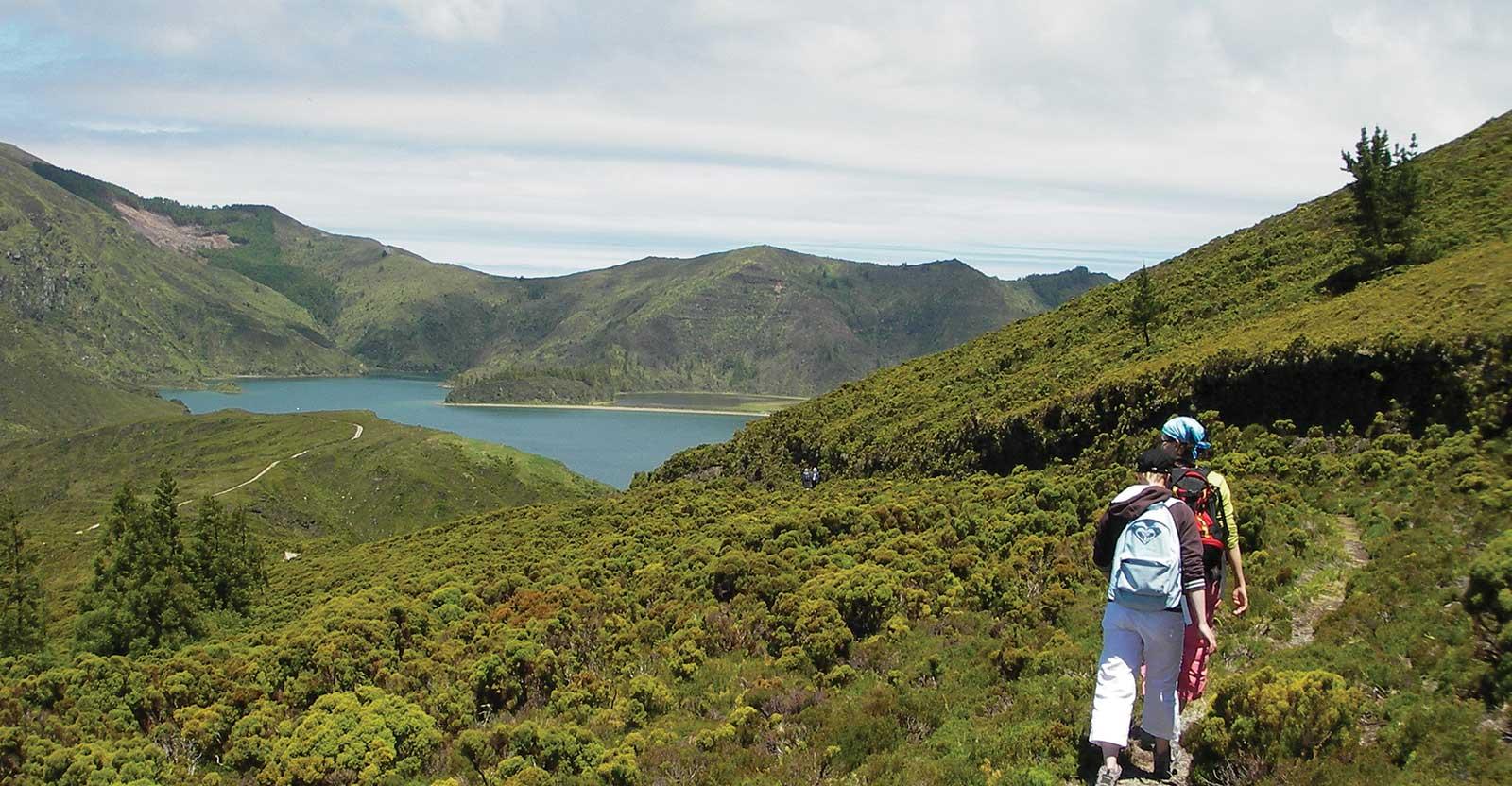 Randonnée Vinhas da Criação Velha avec vue panoramique sur le vignoble, île de Pico